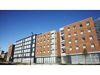 *ROOM AVAILABLE* Floor 4, block 4, Flat 59 , Room 2 New Bridge Street Accommodation