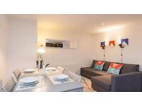 Stunning 1 bed flat with open plan lounge in Shoreditch on Brick Lane - only £360pw!