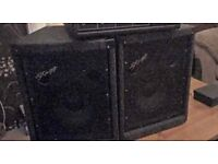 Stagg twin speakers