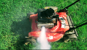 Old or broken lawn mowers for cash