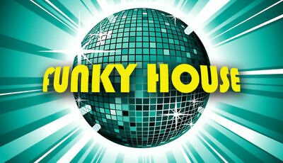 Funky Electro House-All 320kbps Full Length & Unmixed-16GB-Over 1000 Tracks! CDJ