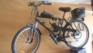 Motorized mountain bike
