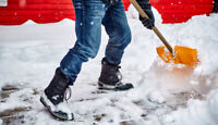 DRIVEWAY SNOW REMOVAL IMMEDIATE SERVICE!