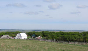 SW Saskatchwan farm/ranch set up for cattle