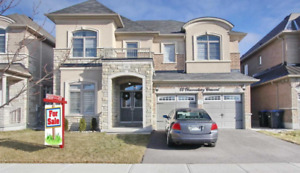 4+1 Bdrms, 4 Wshrms, Separate Entrance (Gore Rd / Mayfield)