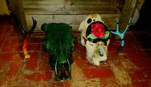 Cow skulls and deer sheds  Strathcona County Edmonton Area image 1