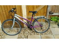 Matrix Satin Ladies Mountain Bike