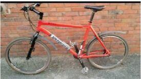 STOLEN - Specialized Rockhopper mountain bike and Sirrus Pro Carbon road bike