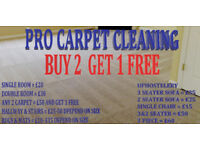 Professional Carpet Cleaning & Upholstery