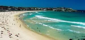 Bondi Beach NYE Bondi Beach Eastern Suburbs Preview