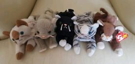 Beanie Baby Cats (set of 5)