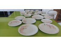 SUPERB RETRO 26 PIECE DINNER SERVICE 'HEDGE ROSE'