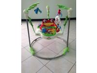 * Fisher Price Baby Jumperoo *