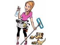 BUSY HANDS - CLEANING SERVICE Promotion!!!!