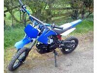 125cc pit bick