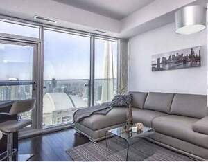 Bachelor Furnished 1br Located Is DOwntown Toronto