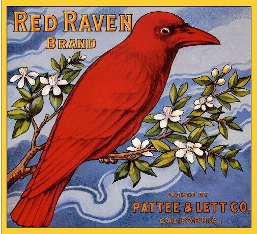 Riverside California Red Raven Bird Orange Citrus Fruit Crate Label Art Print