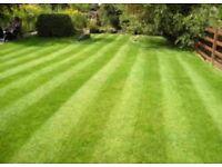 Your Local Home&Garden services