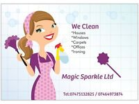 We Clean Houses Windows Carpets Offices
