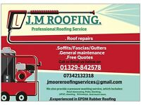 Gutter and Roof cleaning services