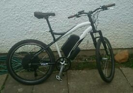 Electric bike 1000 / 250 watt