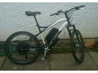 Electric bike 1000 / 250 watt