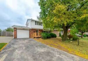 ★Hamilton West Mountain single house for sale by owner★