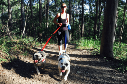 Experienced Dog Walker / Pet Sitter Available