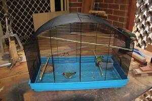 Gouldians with a cage Willetton Canning Area Preview