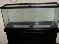 Looking for unwanted free fish tanks...