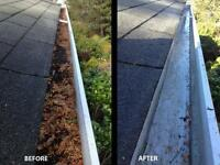 Gutter Cleaning & Roof Repair/Misc. ($50)