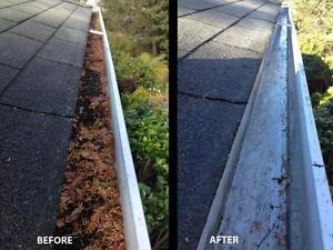Gutter Cleaning & Roof Repair/Misc. ($50) Regina Regina Area image 1