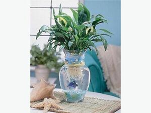 Large Glass Vase or Betta Fish Aquarium - Excellent Condition $7