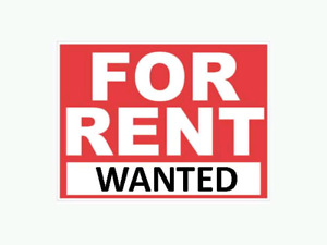 Older Lady Looking for Long-Term Housing!