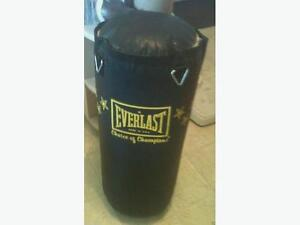 50lb Everlast Heavy/Punching bag with mounting hardware.