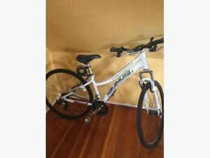 nakamura bike for sale $100