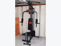 Pro power multi gym must go