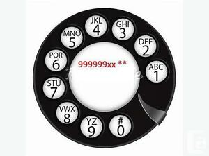 4116 Lucky Phone Numbers 416.856.SOLD.7653 / 416.X58.2000