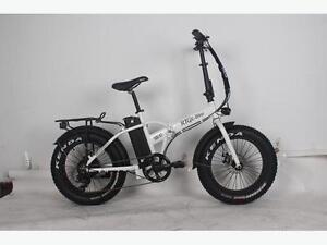 RTG 500 XT (500W) Foldable Fat tire Ebike