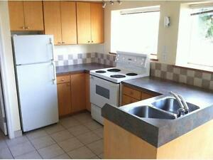Cook-Quadra 2 BR Bright Lower Suite - July 1 - Lease
