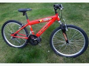 Stolen kids mountain bike