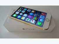 Iphone 6 16GB Gold (used)