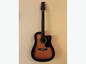 BeaverCreek Acoustic Electric Guitar with Profile Case & more!