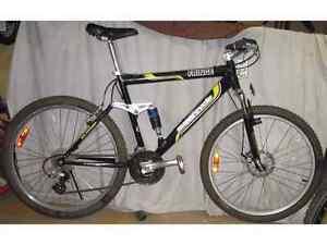 Supercycle Fringe mountain bike