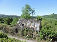 NEEDED IN SHROPSHIRE. DERELICT STONE BUILDING IN SMALL WOODLAND/MEADOW FOR BIRD REHAB/BEE KEEPING