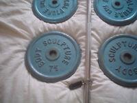 body sculpture metal weight plates