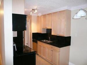 2 bedroom condo for rent, great downtown location, avail Feb 1st