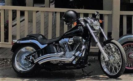 2011 Harley Davidson Softail Standard