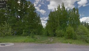 1/2  acre lots within City limits