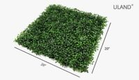 Backdrop Grass Wall Rental